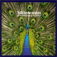 BLUETONES / EXPENCTING TO FLY