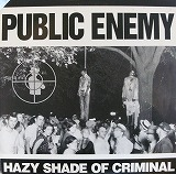 PUBLIC ENEMY / HAZY SHADE OF CRIMINAL