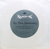 BJORK / BIG TIME SENSUALITY (REMIX)