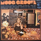 ELECTRONIC CONCEPT ORCHESTRA / MOOG GROOVE