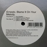 ERNESTO / BLAME IT ON YOUR MELODY