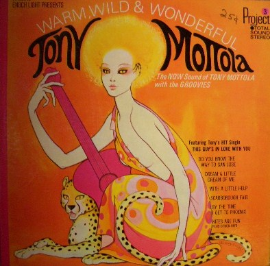 TONY MOTTOLA / WARM WILD & WONDERFUL