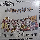 HAPPY VALLEY / THE TURNCOAT / P.T.O. VOLUME 1