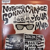 BADLY DRAWN BOY / NOTHING'S GONNA CHANGE YOUR MIND