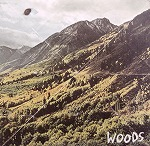 WOODS / SONGS OF SHAME