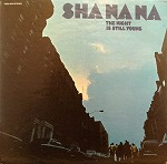 SHA NA NA / THE NIGHT IS STILL YOUNG