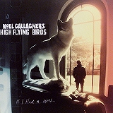 NOEL GALLAGHER'S HIGH FLYING BIRDS /IF I HAD A GUN