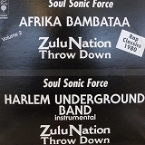 AFRIKA BAMBAATAA  & SOUL SONIC FORCE / ZULU NATION