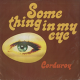 CORDUROY / SOMEHING IN MY EYE