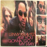 LENNY KRAVITZ / ARE YOU GONNA GO MY WAY