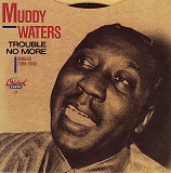 MUDDY WATERS / TROUBLE NO MORE