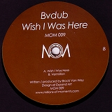 BVDUB / WISH I WAS HERE