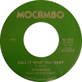 EPHEMERALS / CALL IT WHAT YOU WANT