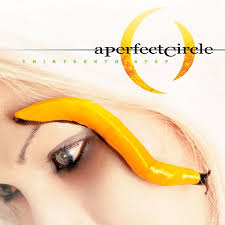 A PERFECT CIRCLE / THIRTEENTH STEP