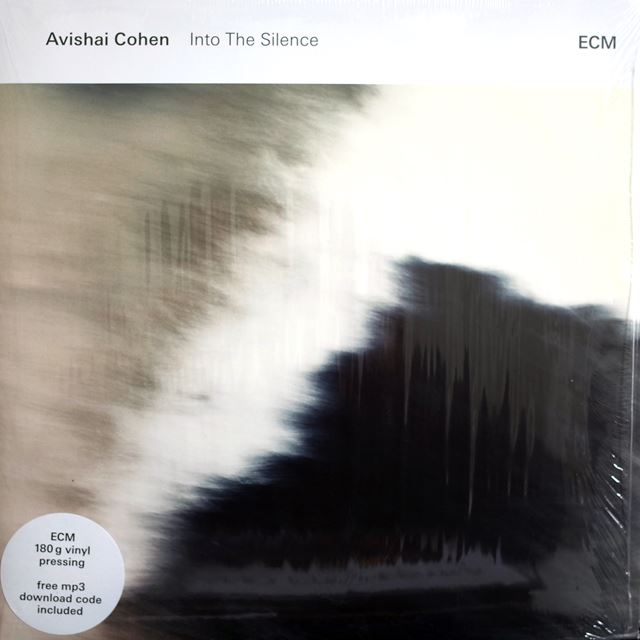 AVISHAI COHEN / INTO THE SILENCE