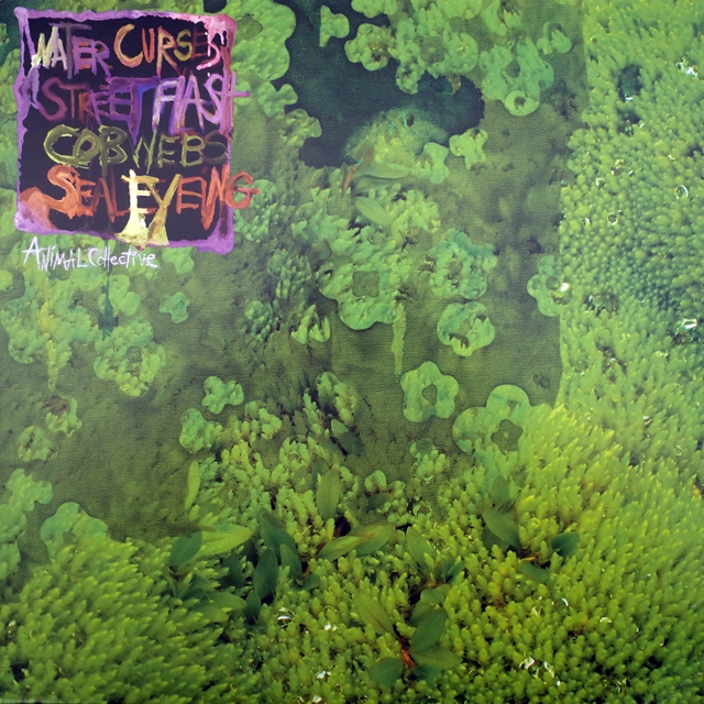 ANIMAL COLLECTIVE ‎/ WATER CURSES