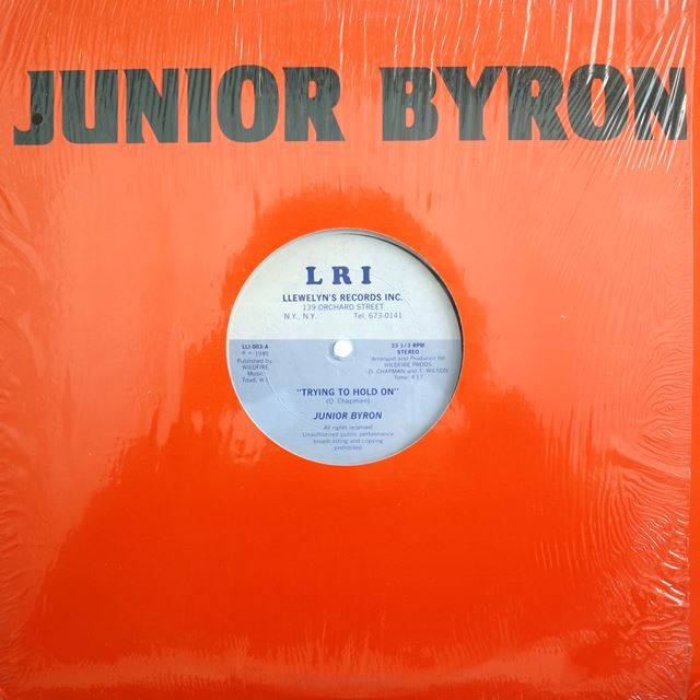 JUNIOR BYRON ‎/ TRYING TO HOLD ON