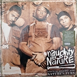 NAUGHTY BY NATURE / NINETEEN NAUGHTY NINE NATURE