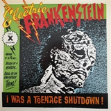 ELECTRIC FRANKENSTEIN ‎/ I WAS A TEENAGE SHUTDOWN