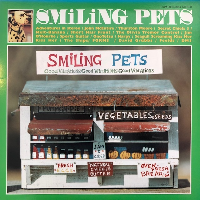 VARIOUS (JIM O'ROURKE, THURSTON MOORE) / SMILING PETS