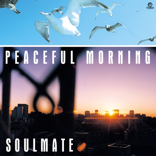 SOULMATE / PEACEFUL MORNING (7INCH EDIT)