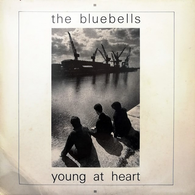 BLUEBELLS ‎/ YOUNG AT HEART